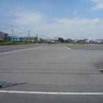 川崎カーゲート調査地